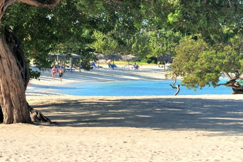 Playa Pesquero Beach View