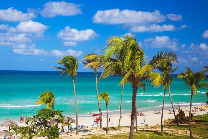 Starfish Cuatro Palmas Hotel Beach