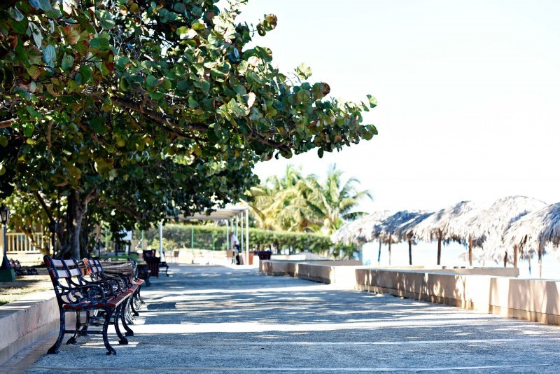 Starfish Cuatro Palmas Hotel Grounds